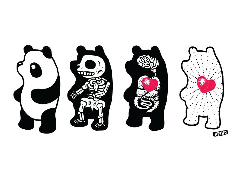 Panda Anatomy
